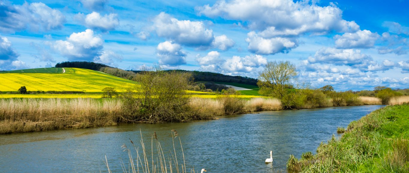 Photo of a river in West Sussex