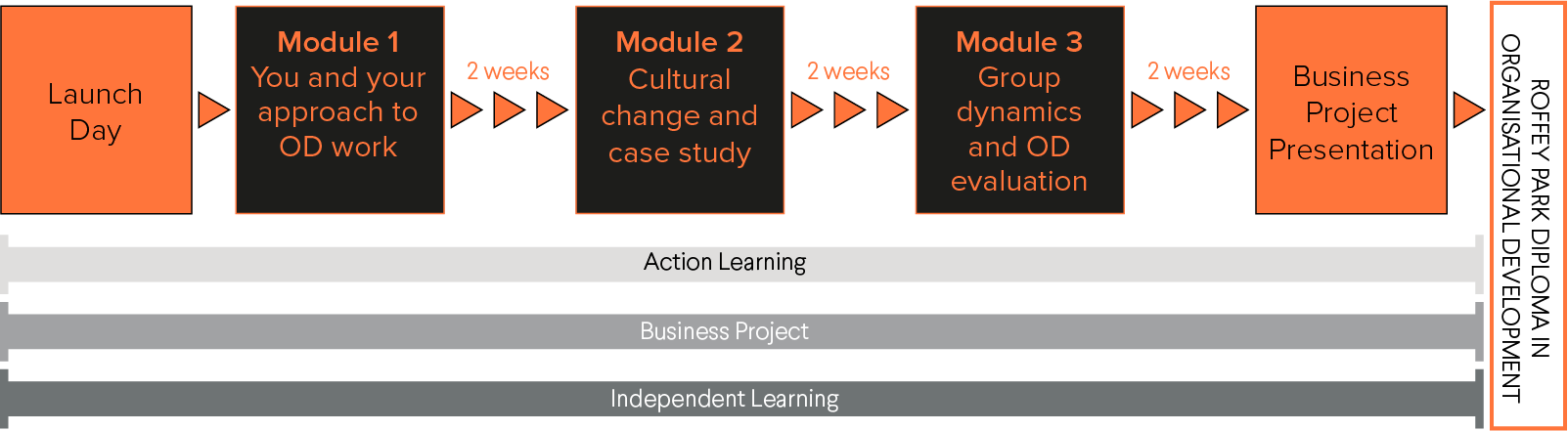 Diagram showing the outline for the Diploma in Organisational Development