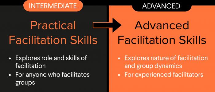 Diagram showing advanced facilitation skills pathway