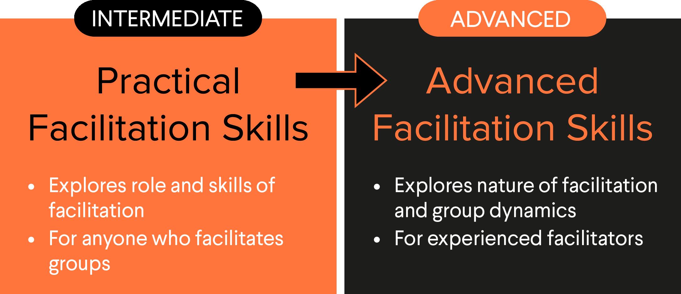 Diagram showing facilitation training skills programme pathway