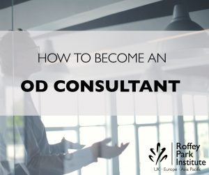 How to be an OD consultant photo