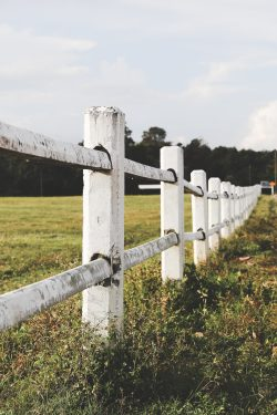 Photo of white picket fence representing boundaries