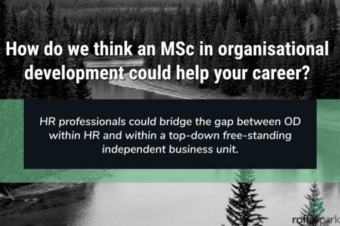 Image about how an MSc in OD could help your career