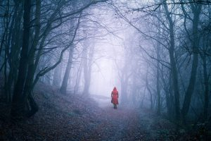 Photo of a girl in red walking alone in the woods