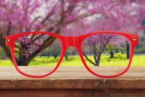 Photo of a pair of reading glasses with a view of blossom tress behind