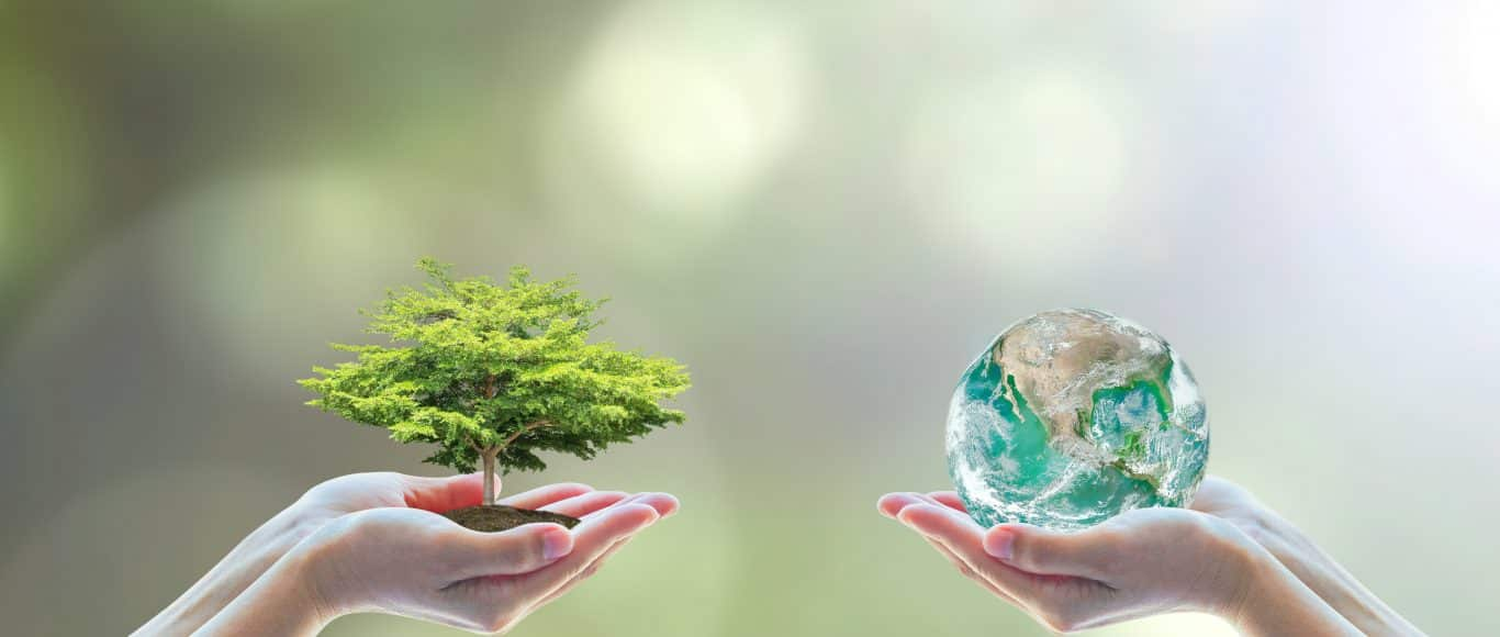 Environment policy 1