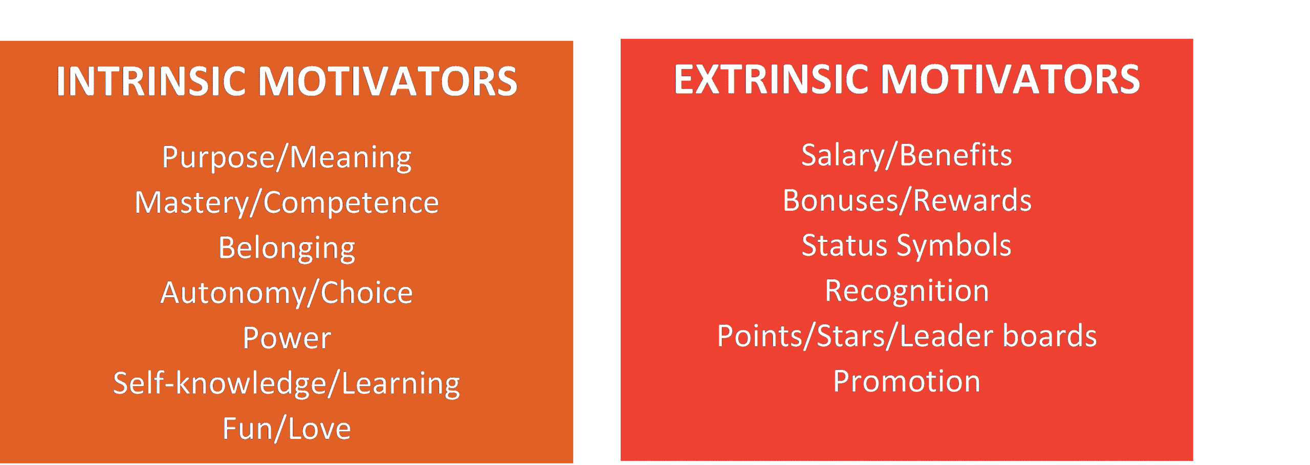 Photo of two boxes, one describing what INTRISIC MOTIVATORS means and one explaining what EXTRINSIC MOTIVATORS means