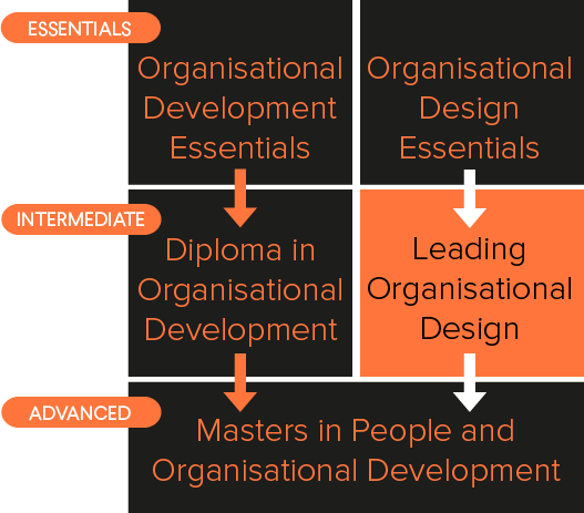 Diagram showing organisational development courses