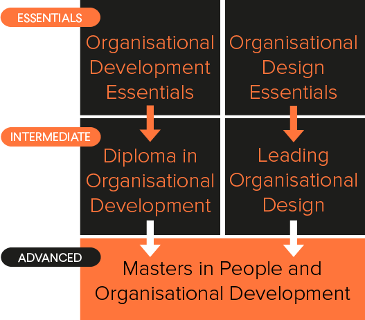 Diagram showing organisational development courses