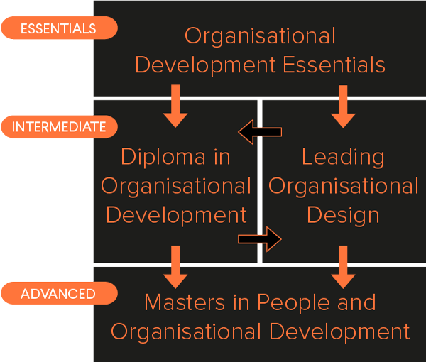 Diagram showing different OD courses