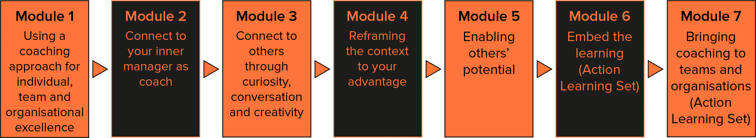 Diagram showing modules for Manager as Coach programme