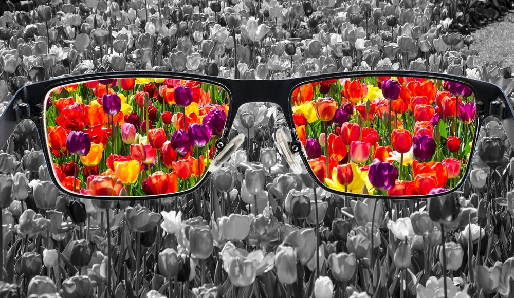 Photo of glasses looking at fields, representing psychology of change